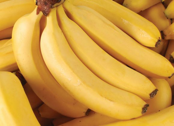 The prices of the banana in the retailers are very low