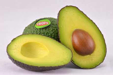 Trops culminates the first shipment of Spanish Hass avocado to USA